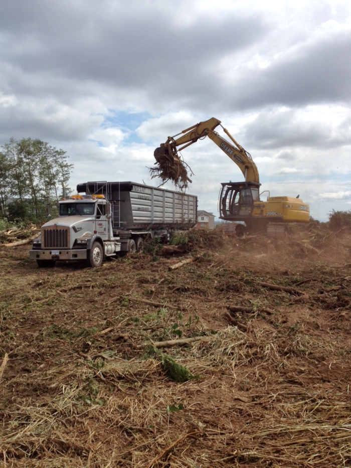 Land clearing in the Lower Mainland